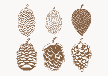Pine Cones Vector Collection - бесплатный vector #433503