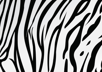 White Tiger Stripe Pattern Vector - vector gratuit #433973