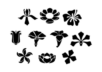 Free Flowers Silhouette Vector - Kostenloses vector #434573