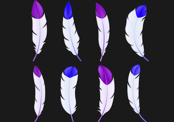 Set Of Pluma Vectors - vector gratuit #434923