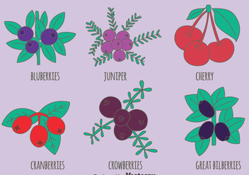 Berries Fruit Collection Vectors - бесплатный vector #435903