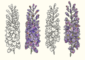 Hand Drawn Wisteria Flower Vector Illustration - бесплатный vector #437333
