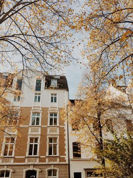 Autumn in the city - image gratuit #439243