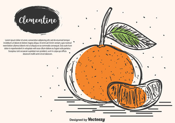 Hand Drawn Clementine Vector Background - Free vector #439343