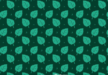Stevia Leaves Seamless Pattern Vectors - Kostenloses vector #439413