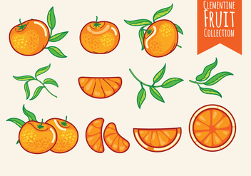 Set of Clementine Fruits - vector #440093 gratis