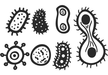 Mold vector set - vector gratuit #441443