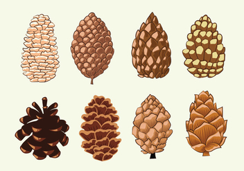 Pine Cones Set Collection - Free vector #441963