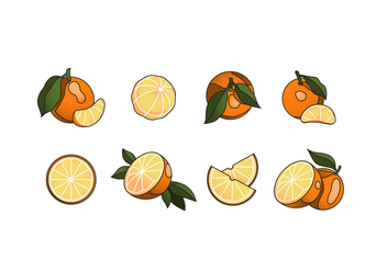 Free Clementine Vector Pack - бесплатный vector #442253