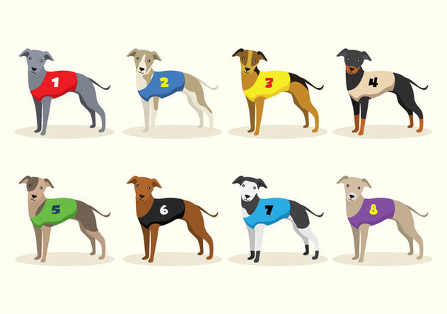 Racing Whippet Dog Vectors - Free vector #445683