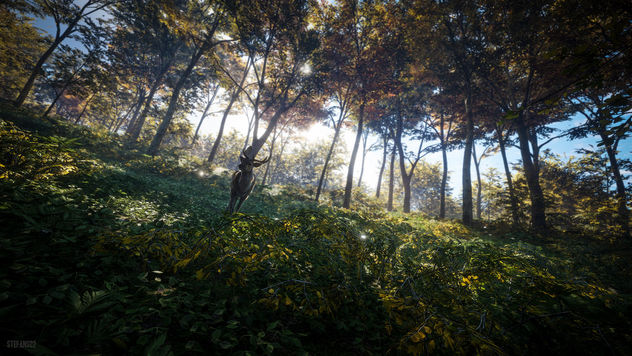 TheHunter: Call of the Wild / The Exploring Deer - Free image #447023