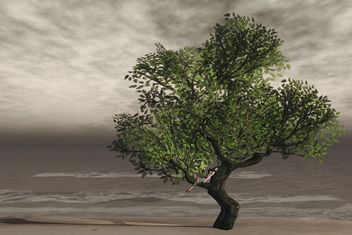 Pose My Lovely Tree by Q Poses - Free image #448083