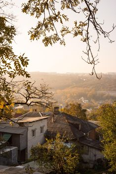 View of autumn roofs - бесплатный image #448183
