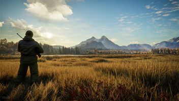 TheHunter: Call of the Wild / The Cover (Alt) - image #448353 gratis