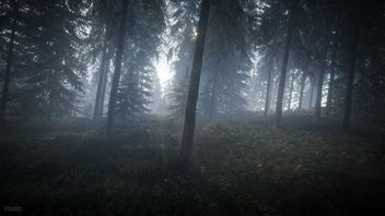 TheHunter: Call of the Wild / Misty Forest - image gratuit #448703