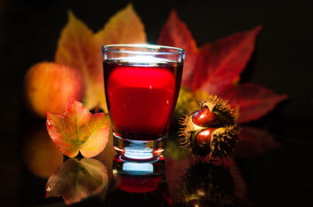 Beautiful Autumn still life - drink for free - Kostenloses image #449143