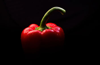 Red Pepper - Free image #452043