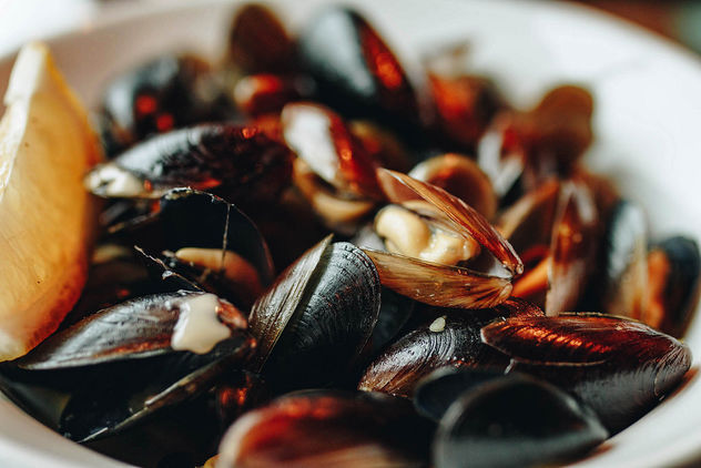 Close up of mussels in a plate. Restaurant background.jpg - image #452883 gratis