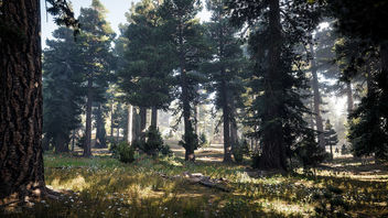 Far Cry 5 / Nature's Call - Free image #453163