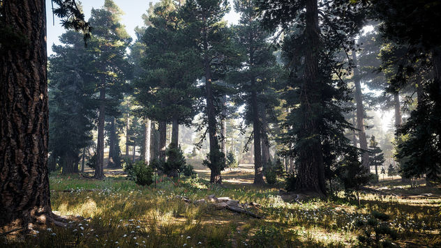 Far Cry 5 / Nature's Call - image gratuit #453163