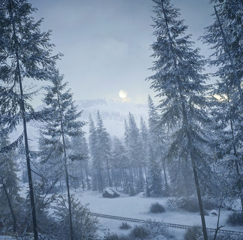 TheHunter: Call of the Wild / Today's Forecast: Snow - бесплатный image #453973