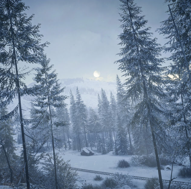 TheHunter: Call of the Wild / Today's Forecast: Snow - image gratuit #453973