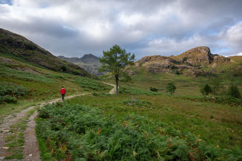 The Lonely Lake District Walker. - Kostenloses image #455823