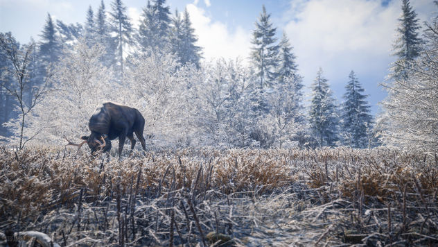 TheHunter: Call of the Wild / Dining Alone - бесплатный image #455833