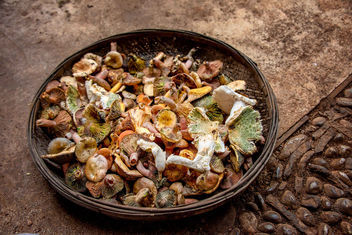 Foraged Mushrooms - image gratuit #456223