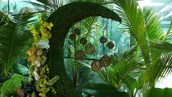 Ornamental horticulture - Wishing all Muslim friends Selamat Hari Raya - image #461403 gratis