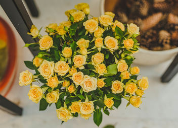 Small Yellow Roses - image #461853 gratis