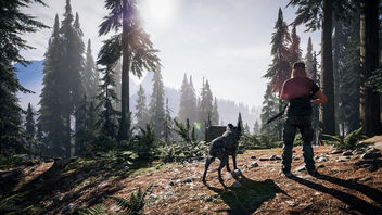 Far Cry 5 / In The Distance - Kostenloses image #463363
