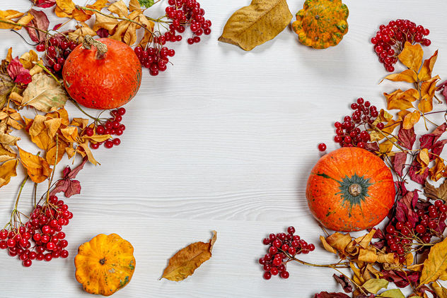 Autumn frame with colorful leaves, pumpkin and viburnum berries on a white wooden background - image #464503 gratis