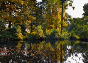 Autumn Reflections - Free image #465243