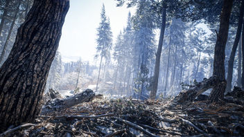 TheHunter: Call of the Wild / Heading In - бесплатный image #466793